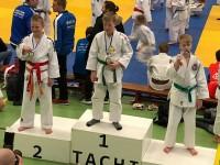Veel judoprijzen in Beilen